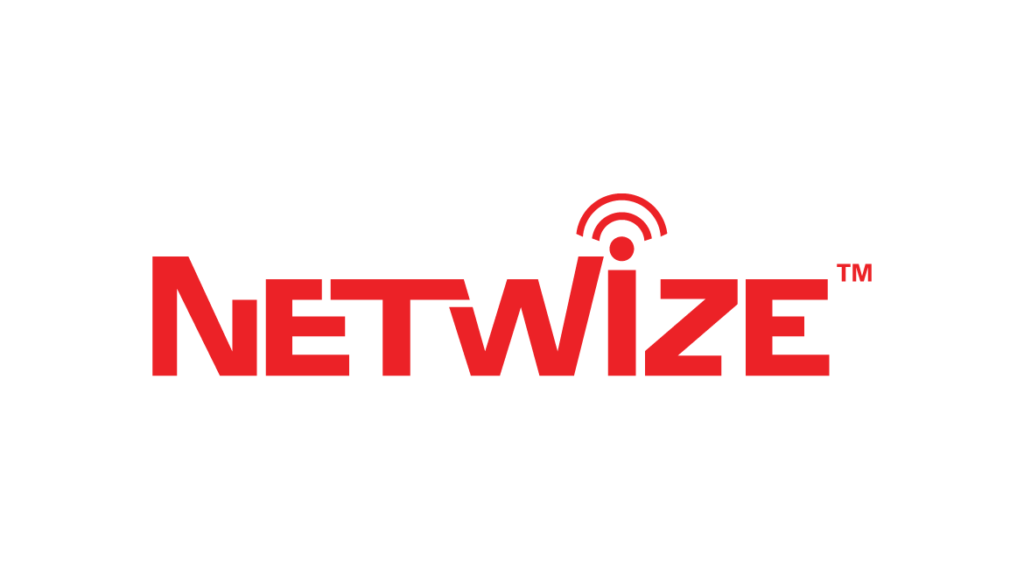 NetWize Logo